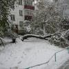 Первый снег.14.10.2007. (10).JPG