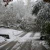 Первый снег.14.10.2007. (7).JPG