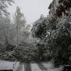 Первый снег.14.10.2007. (9).JPG