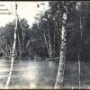 Пруд в парке Лужецкого монастыря