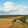 Река Колочь у дер. Горки с высоким берегом. Бородино. 1911.  Фото Прокудина-Горского.