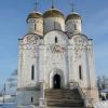 Лужецкий монастырь зимой. (9)