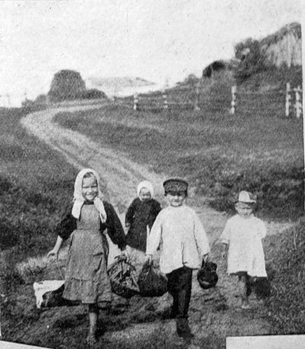 На Бородинском поле.  (из журнала «Искра» за 1910 год).