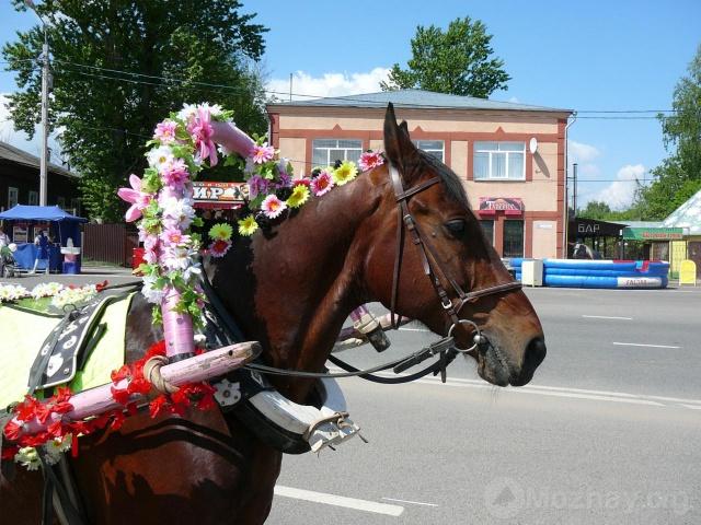 780 лет Можайска 22.05.2011г. (32)